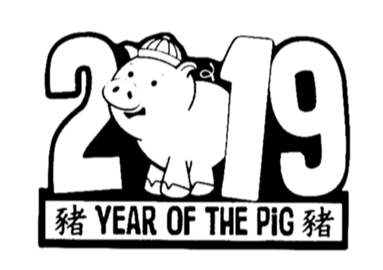 Năm 2019 của tôi