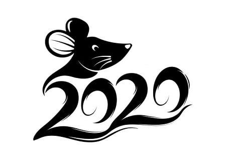 Năm 2020 của tôi và lời cảm ơn đến các bạn đọc